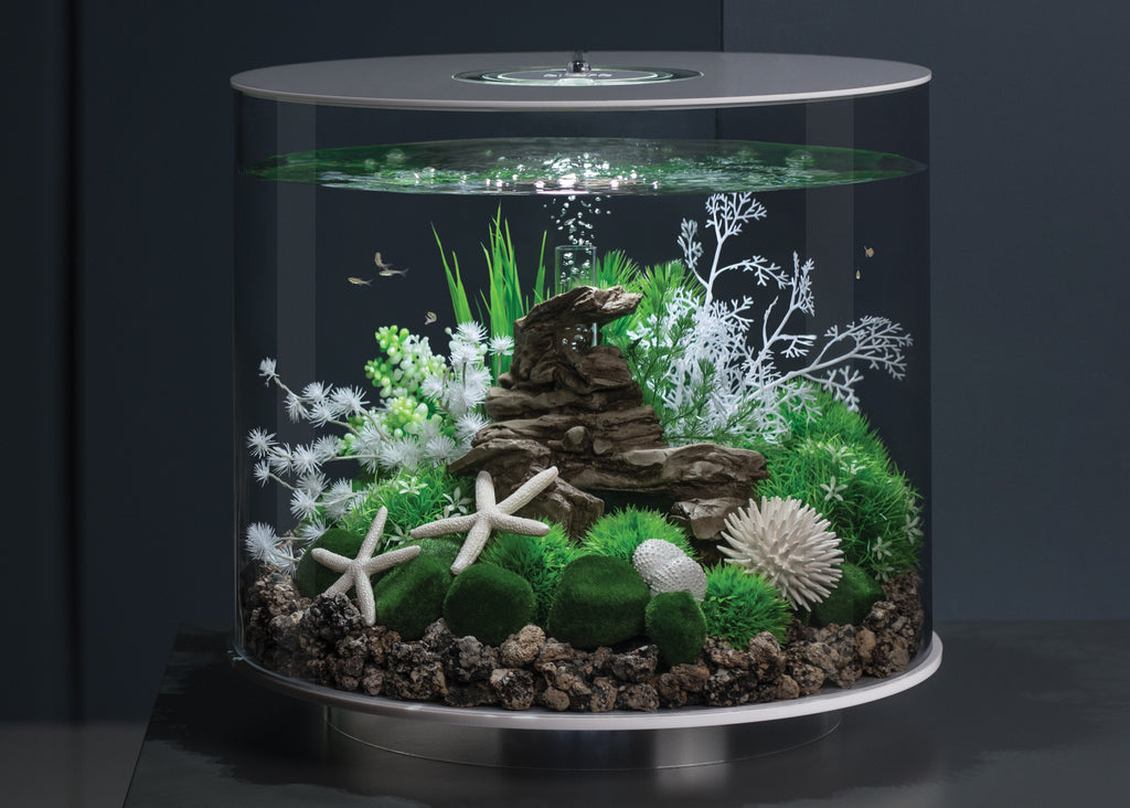 TUBE 35 Aquarium Inspiration