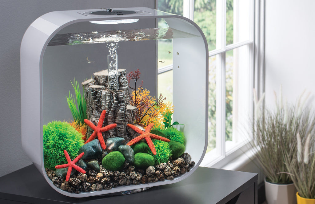LIFE 30 Aquarium Inspiration