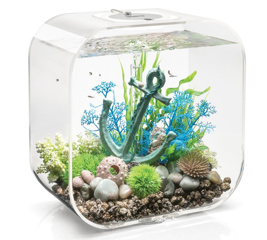 LIFE 30 Aquarium Inspiration 2