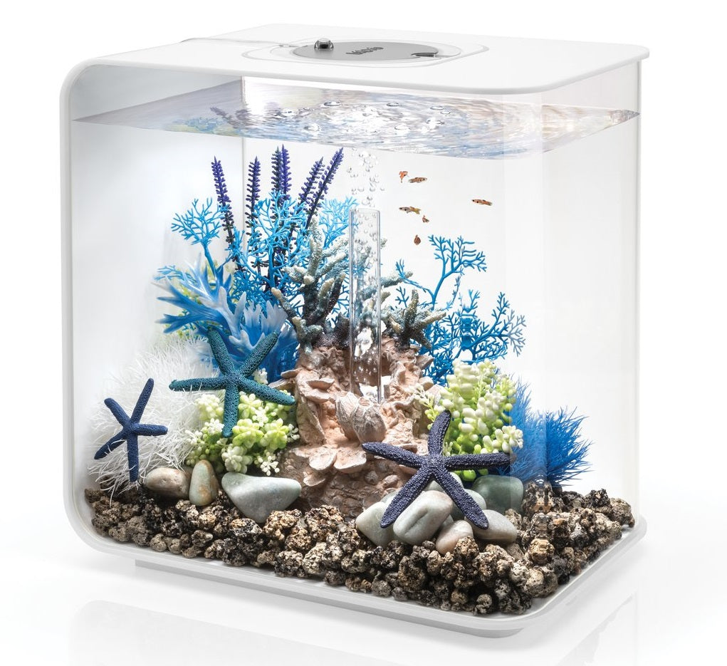 FLOW 30 Aquarium Inspiration 3