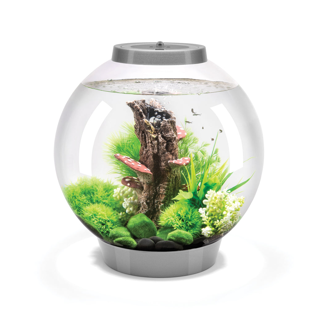 biOrb CLASSIC 30 Aquarium with MCR - 8 gallon