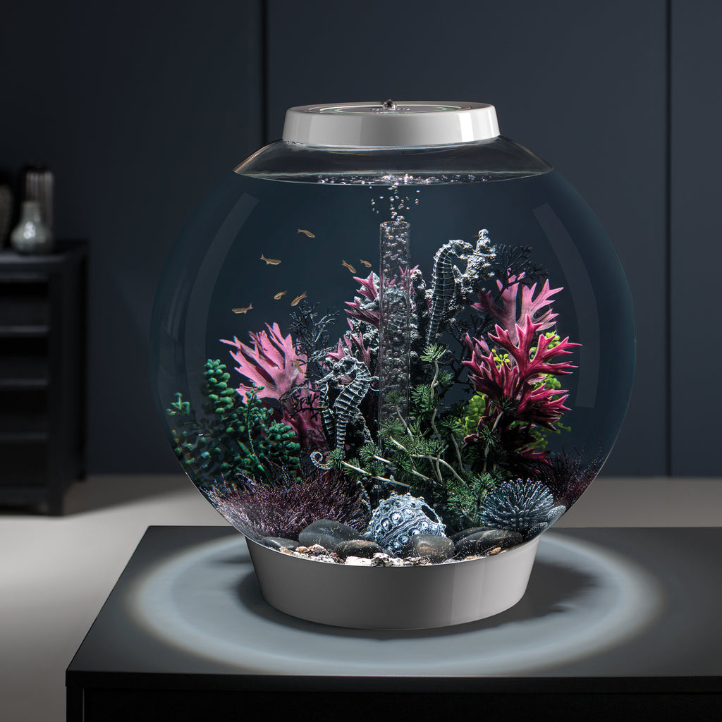 biOrb Sea Fan medium black