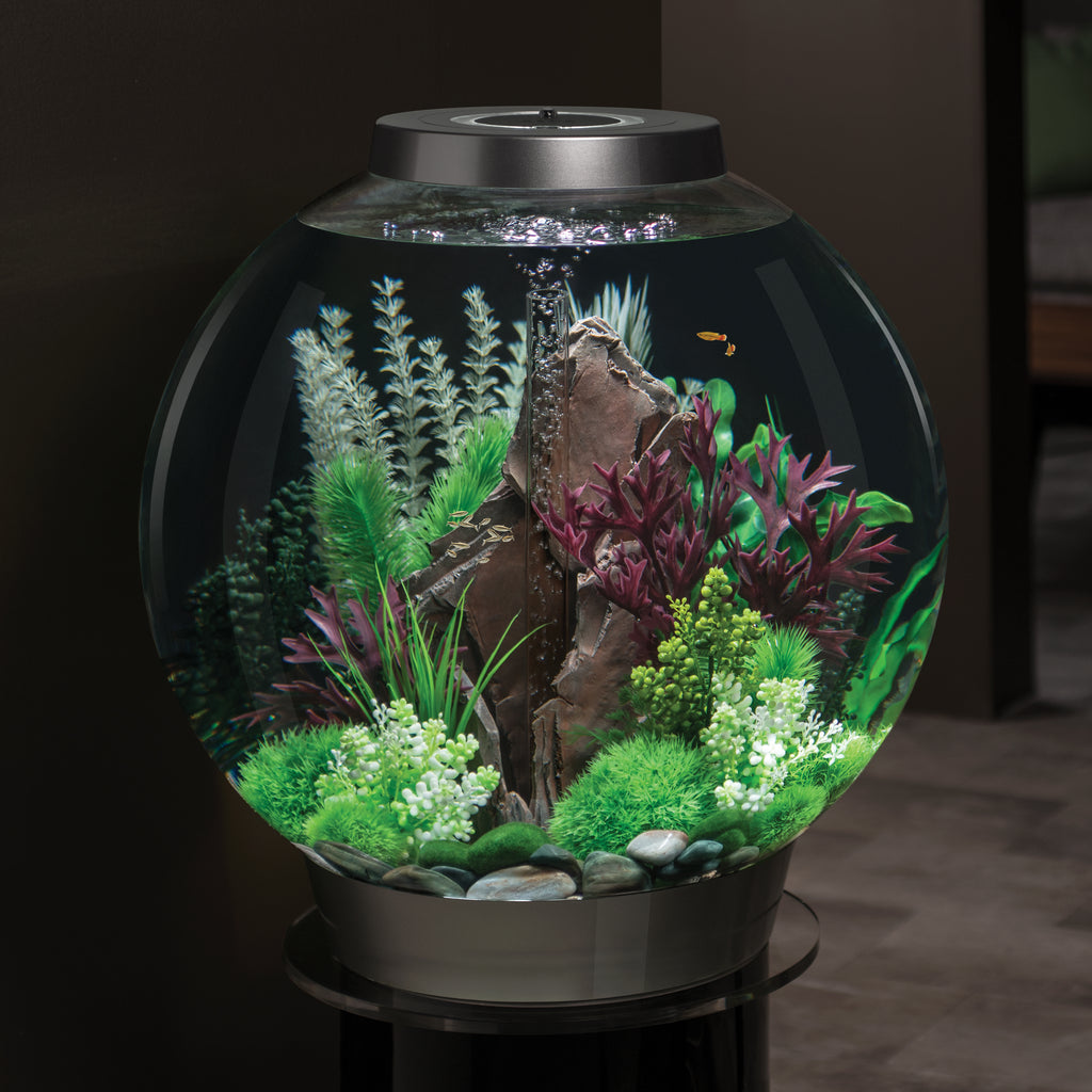biOrb Aquatic Topiary Ball Set of 3