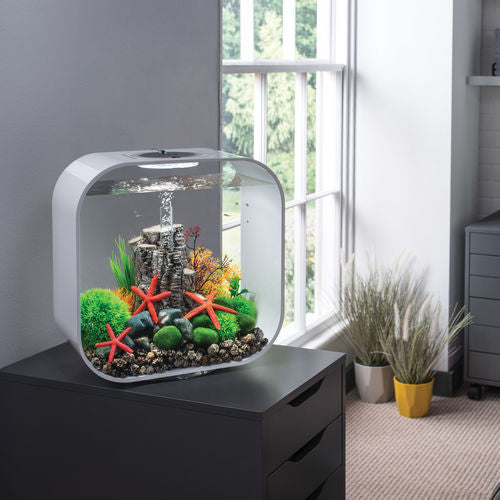 Get inspiration for your aquarium design by using the biOrb LIFE 30 Aquarium