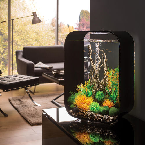 Get inspiration for your aquarium design by using the biOrb LIFE 45 Aquarium
