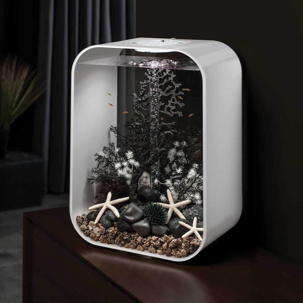 biOrb LIFE 45 Aquarium with MCR - 12 gallon