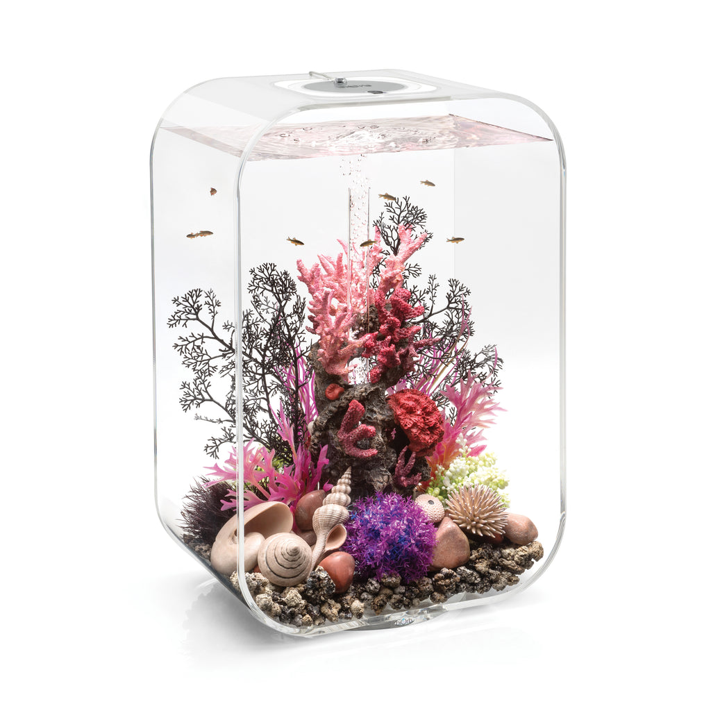 biOrb LIFE 45 Aquarium with MCR available in transparent