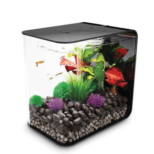 biOrb FLOW 30 Aquarium available in black