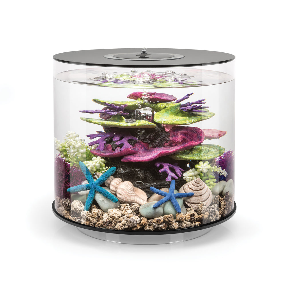 biOrb TUBE 15 Aquarium with MCR - 4 gallon