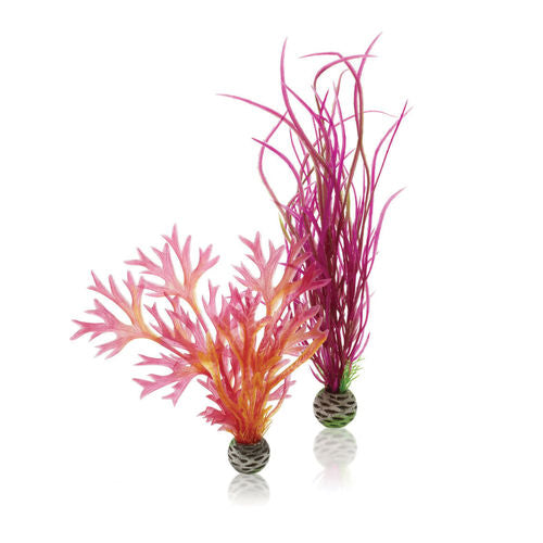 biOrb Aquarium Plant Set