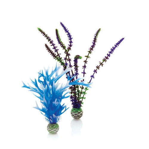 biOrb Plant Set medium blue & purple