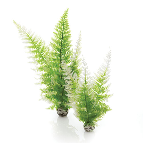 biorb Winter Fern Set 2