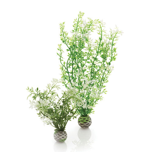 biOrb Winter Flower Aquarium Plant Set of 2