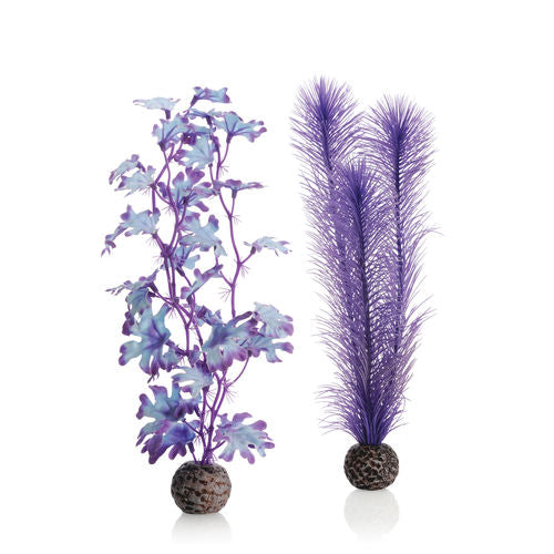 biOrb Kelp Set medium purple