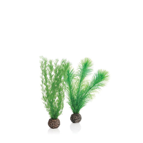 biOrb Feather Fern Set small green