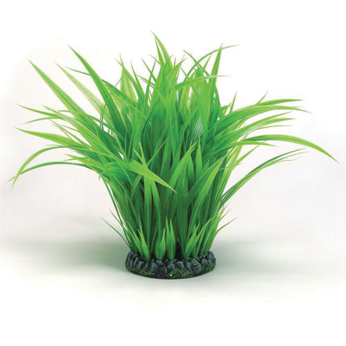 biOrb Grass Ring large green