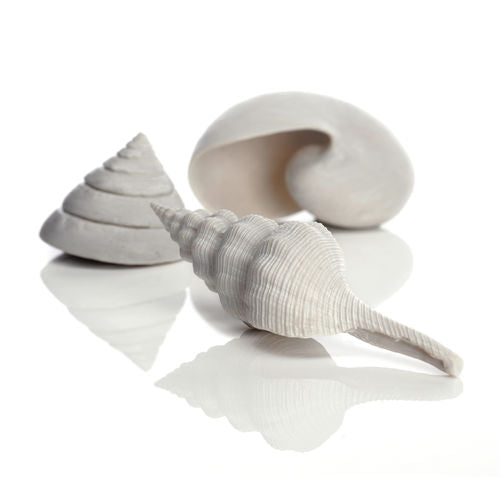 biOrb Sea Shell Set of 3 white