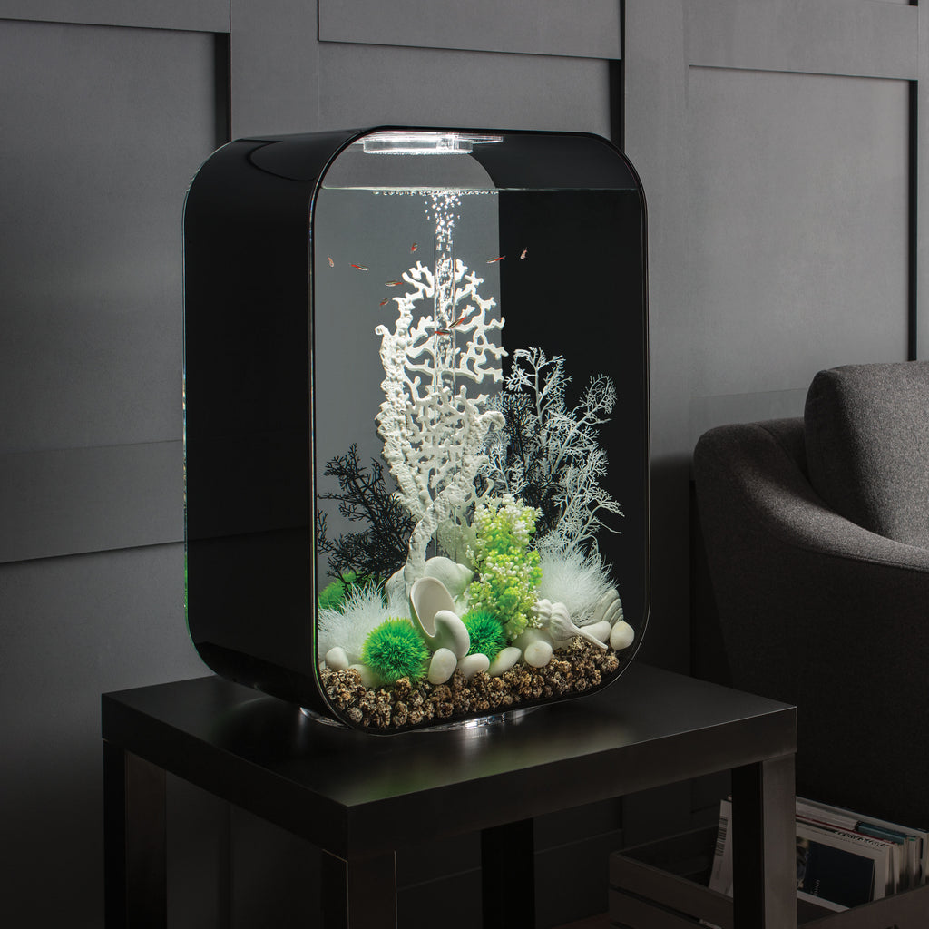 Get inspiration for your aquarium design by using the biOrb Sea Shell Set