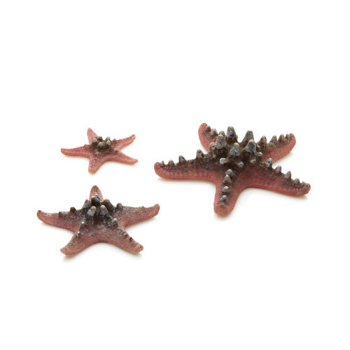biOrb Starfish Set of 3 pink