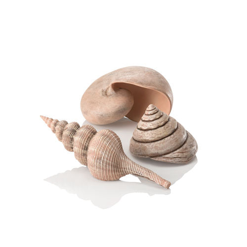 biOrb Sea Shell Set of 3 natural