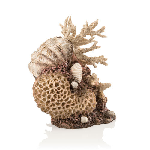 biOrb Coral-Shells Sculpture natural