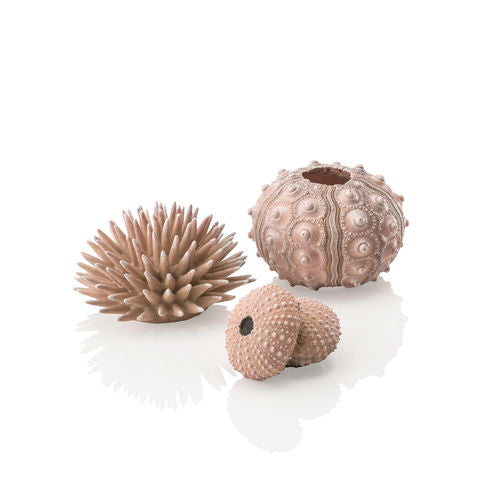 biOrb Sea Urchins Set of 3 natural