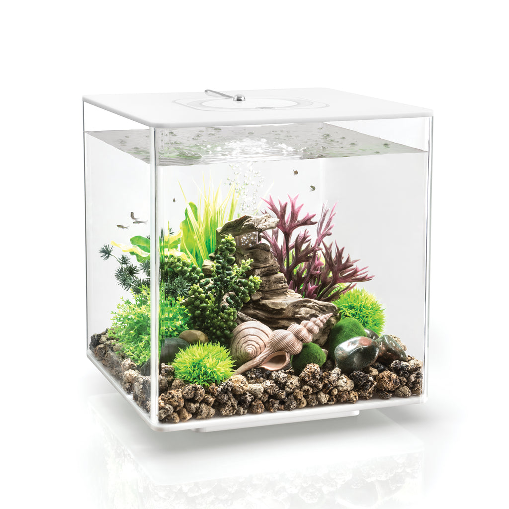 biOrb CUBE 30 Aquarium with MCR available in white