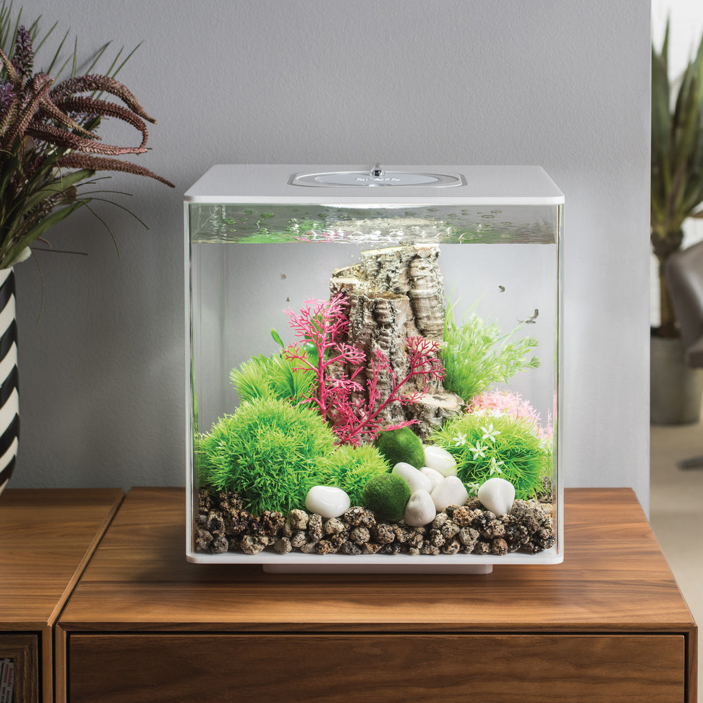 biOrb CUBE 30 Aquarium with MCR - 8 gallon