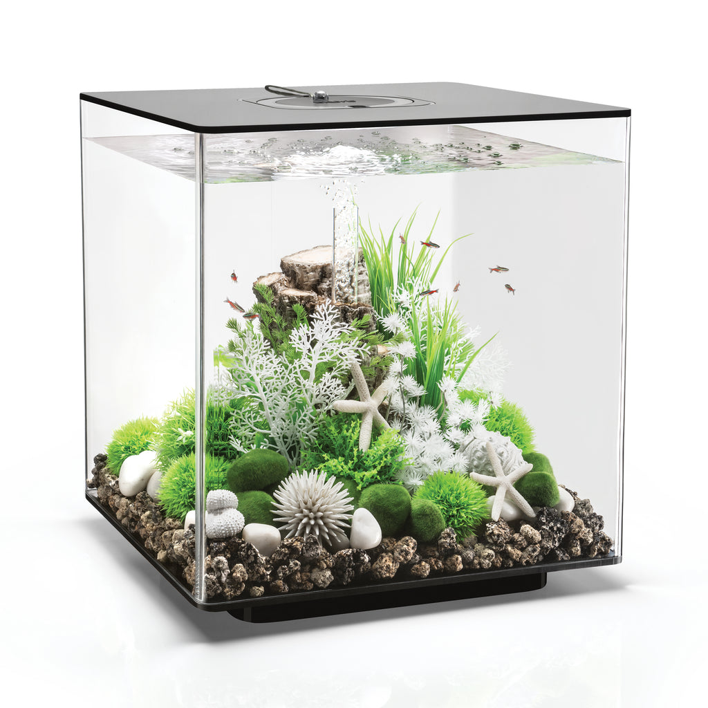 biOrb CUBE 60 Aquarium - 16 gallon