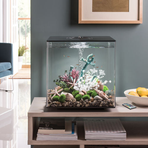 biOrb CUBE 60 Aquarium with MCR - 16 gallon