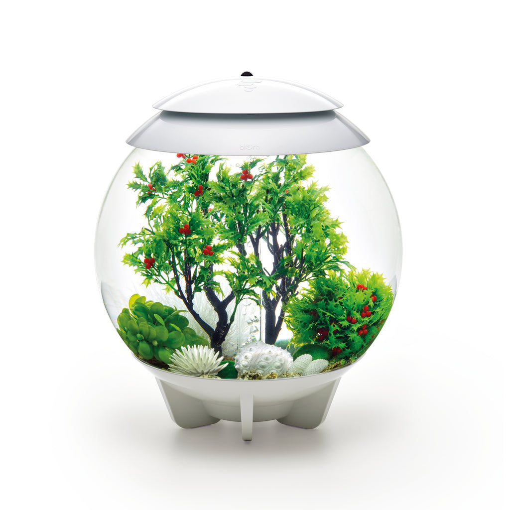 biOrb Aquarium Decor Set in use