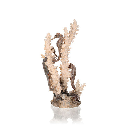 biOrb Seahorses on Coral Sculpture medium natural