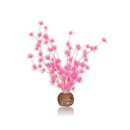 biOrb Aquarium Bonsai Ball pink