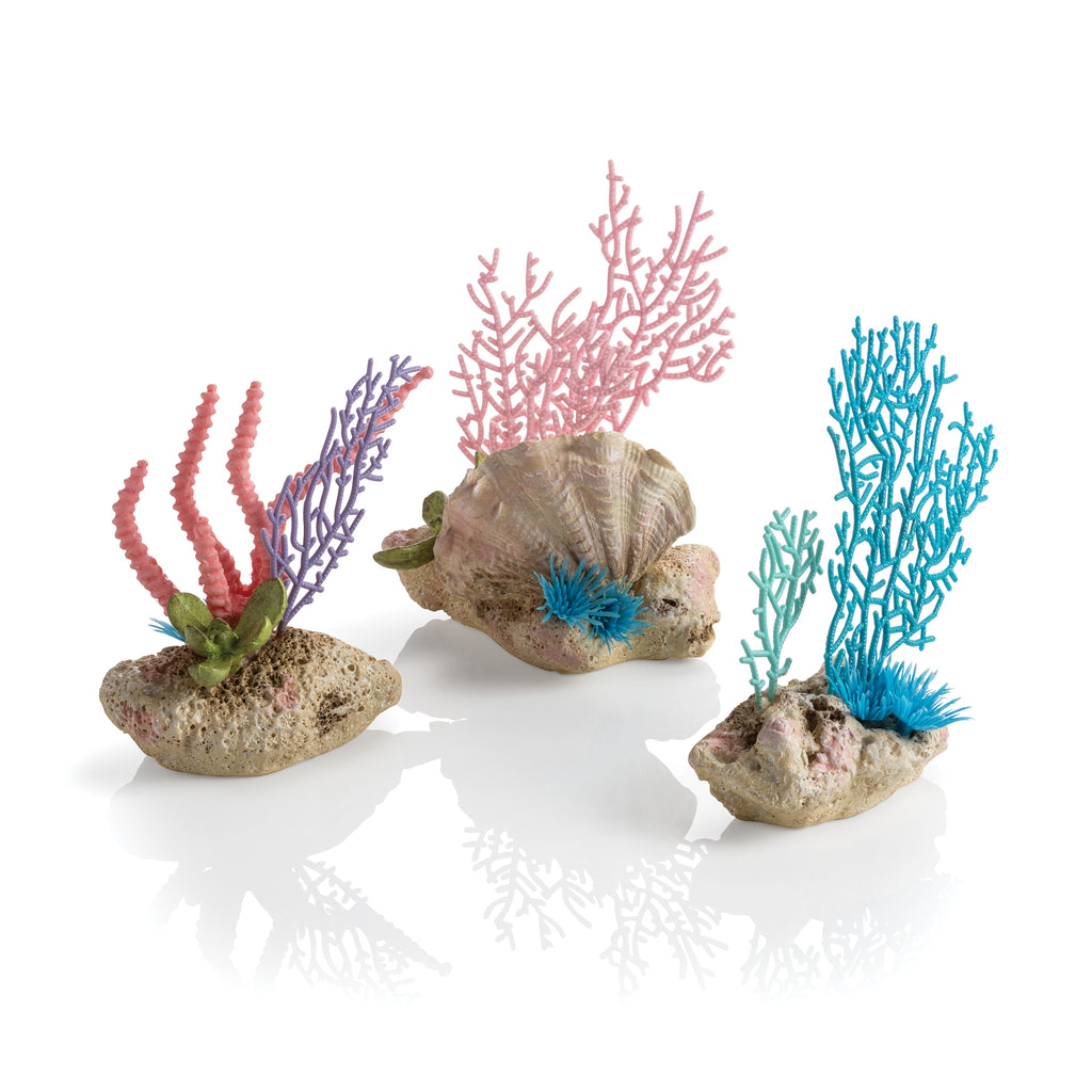 biOrb Seychelles Coral Fans & Shells Set of 3