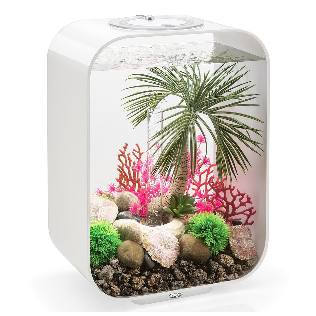 Get inspiration for your aquarium design by using the biOrb Aquarium Seychelles Sea Whip Set of 3