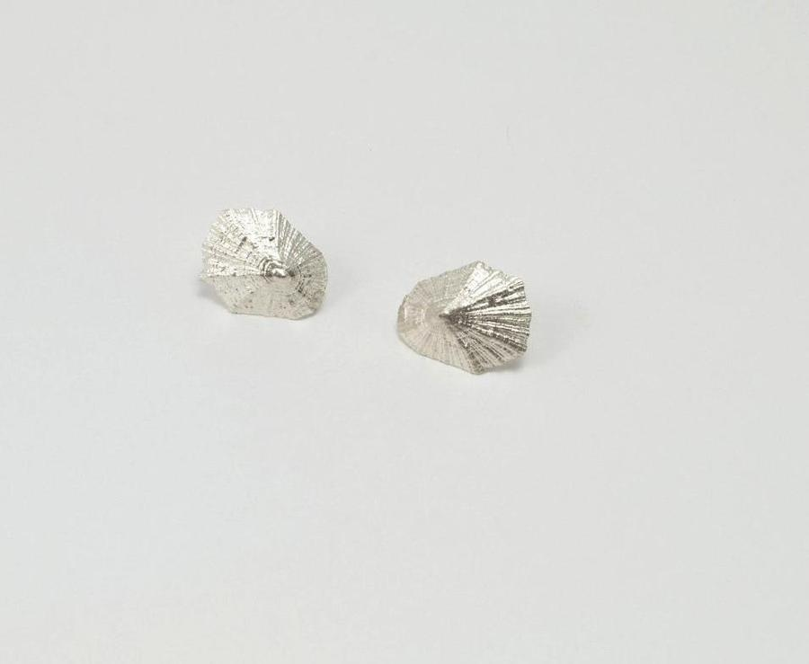 LIMPET SHELL stud earrings - The Collective Dublin