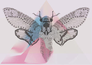 Pink Death Moth Print - The Collective Dublin