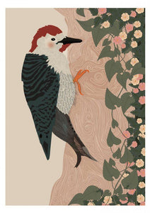 Woodpecker Print - The Collective Dublin
