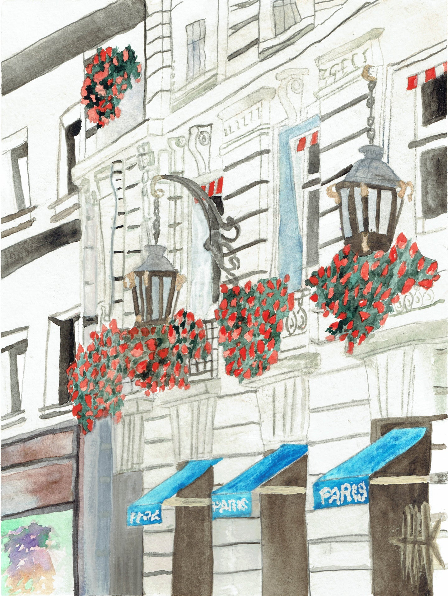 HANGING FLOWERS OF PARIS - CARDS