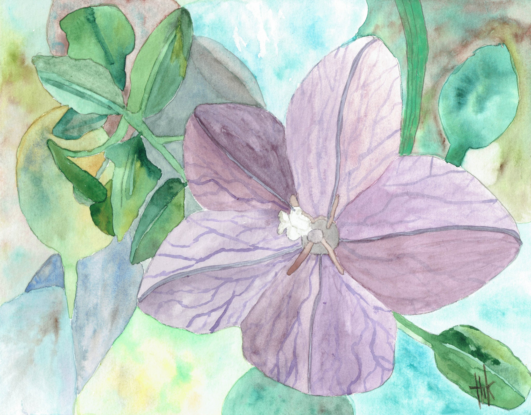 STUDY OF PURPLE FLOWER - PRINT