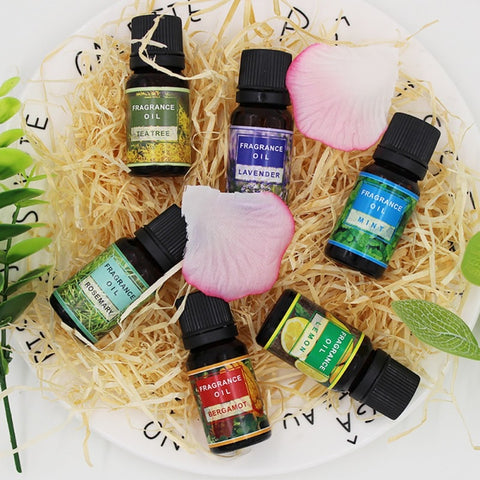 Essential Oils for Humidifier - Trip City