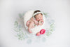 Fauna Wreath Newborn Floral Backdrop