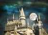 Hogwarts Backdrop