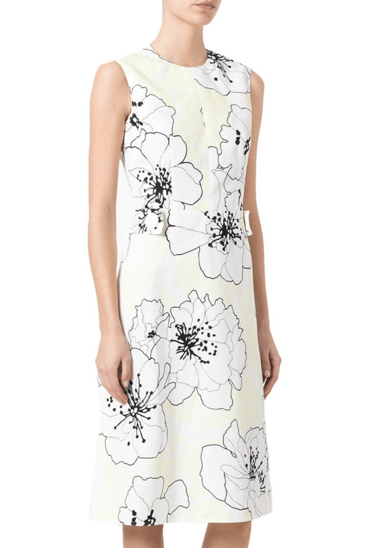 Poplin Posy Print Shift Dress