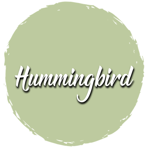 Hummingbird Paint