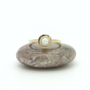 Sea Scallop Pearl Sunburst Ring | 14k Gold | Size 8