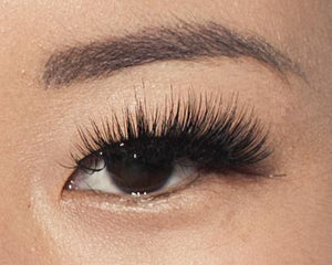 F40 Reusable Premium Strip Lash