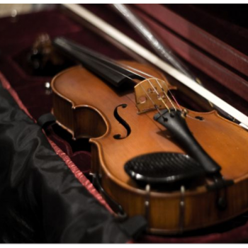 The Ultimate Guide to Buying Violin Cases 2016