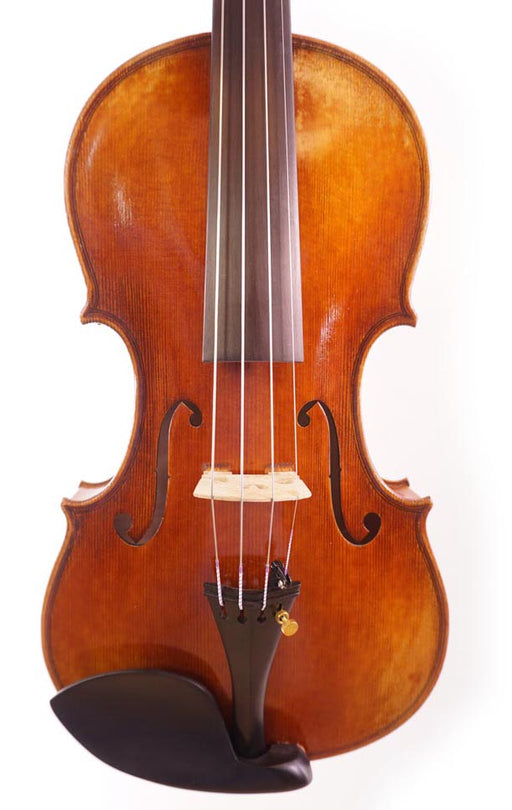 Unlabeled Sample Violin No. 52