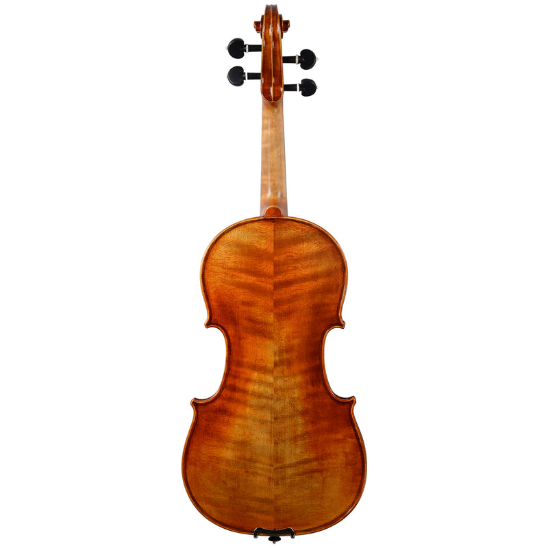 Holstein Workshop Soil Stradivarius Violin